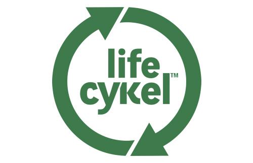 Life Cykel Mushrooms Byron Bay
